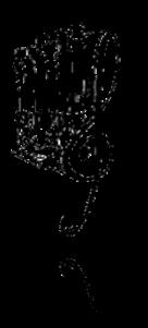 Vign_dessin-orgue